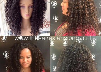 The Ligia-Wig
